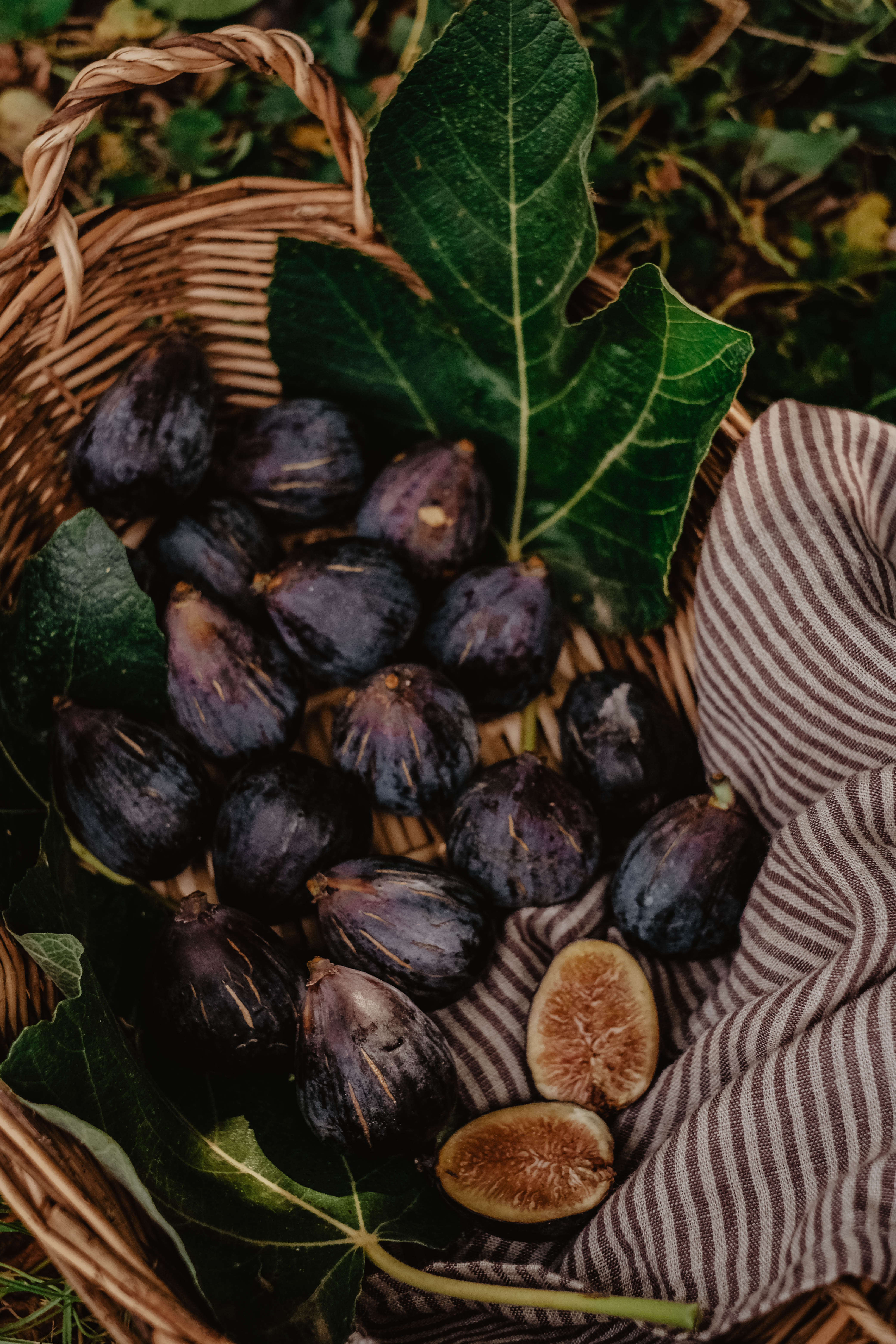 photographie-culinaire-pays-basque-landes